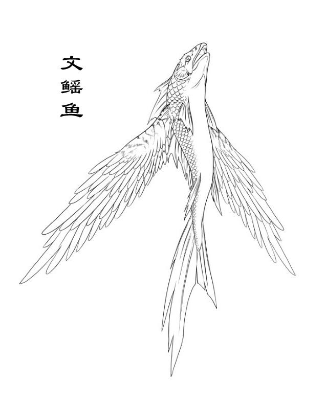 山海经-文鳐鱼